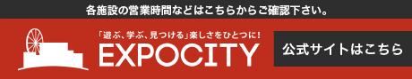 エキスポシティ,WEBサイト